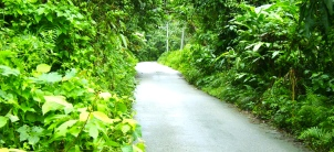 jalan Kampung Berangan